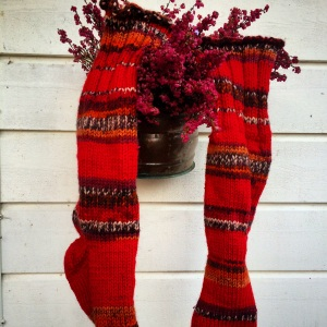 Rødstrømpene mine, varmer godt og har mange fine fargenyanser i seg.
